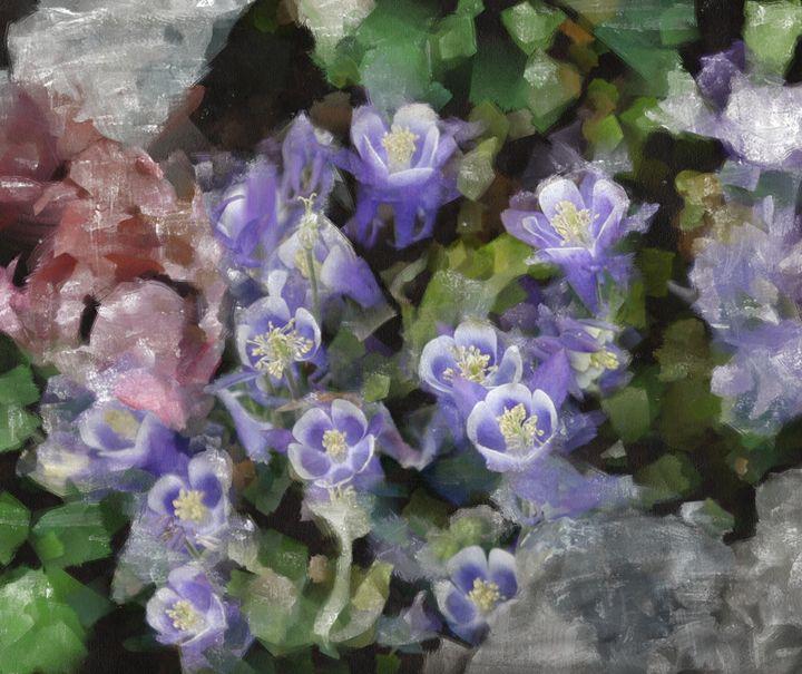 COLUMBINES IN CREVICE - DIGITAL ARTOGRAPHY