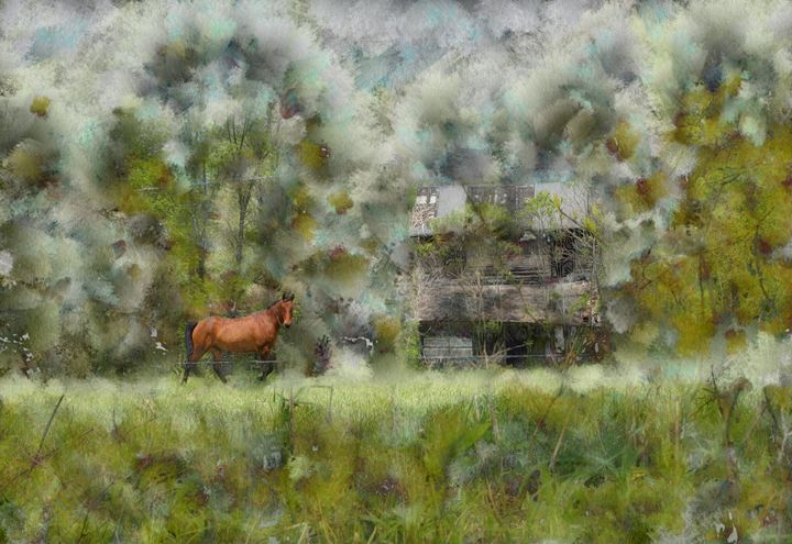 HORSE AND OLD HOUSE - DIGITAL ARTOGRAPHY