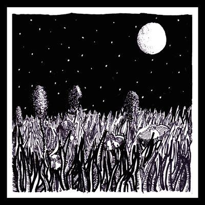 Night Garden 02 - Slate