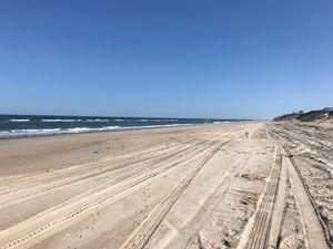 Carova  Beach - OBX Expressions