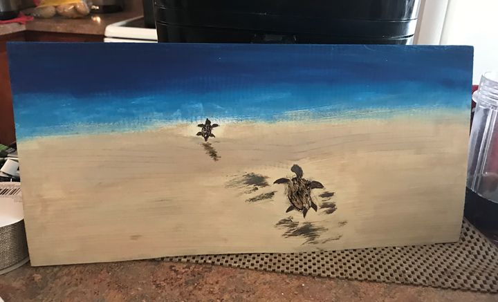 Baby Turtles returning to Sea - OBX Expressions