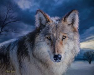 Snow Wolf At Dusk Digital Painting