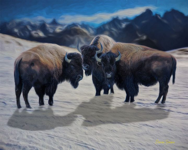 Bison Trio Wildlife Digital Painting - Heart and Soul Art by Dawn Gemme