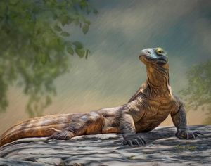 Komodo Dragon Oil Portrait