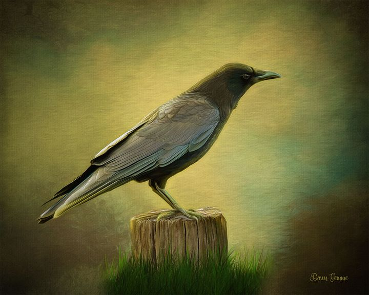 Curious Crow Wildlife Painting - Heart and Soul Art by Dawn Gemme