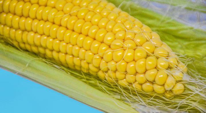 Food Maize Corn Photography - Eva Design