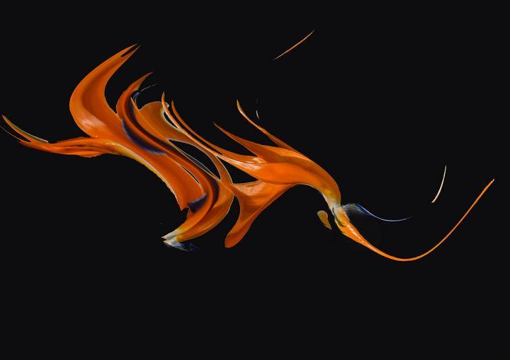 Abstract Art Flying Dragon - Eva Design