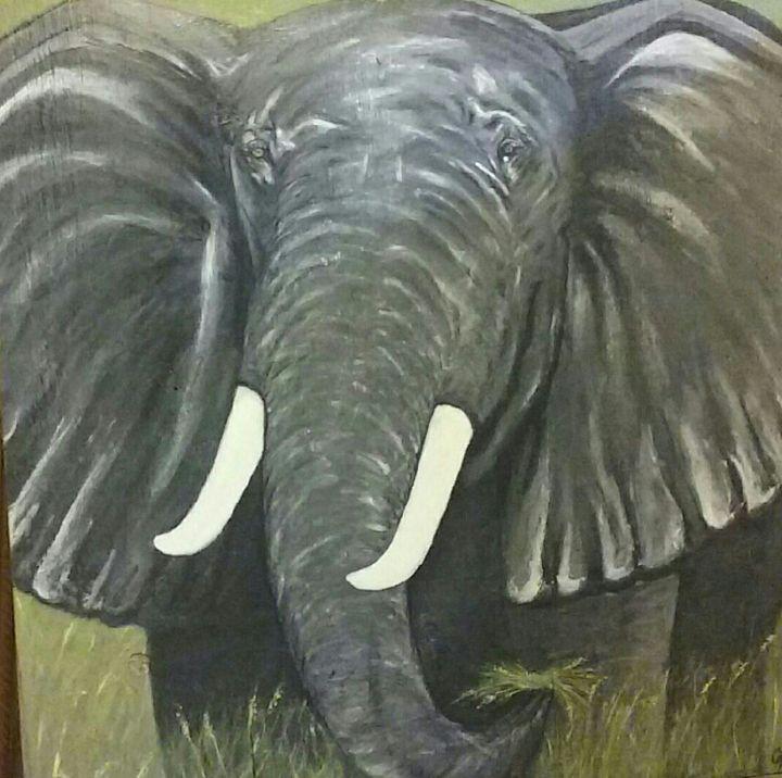Elephant - Art For the Master