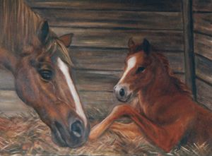 Thoroughbred mare and newborn foal