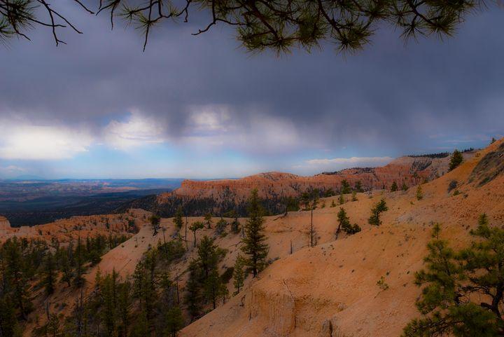 Rain on the South Rim - Aspen Ridge Gallery
