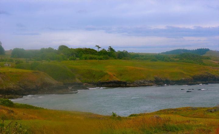 Cattle Beach, San Juan Island - Aspen Ridge Gallery