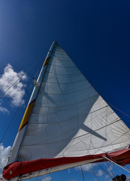 Lets go sailing - Aspen Ridge Gallery