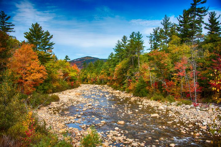 White Mountain Stream - Aspen Ridge Gallery