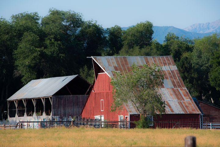 Tin Roof Barn - Aspen Ridge Gallery