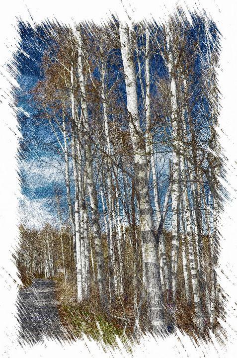 Aspens at Cascade Springs-Utah - Aspen Ridge Gallery