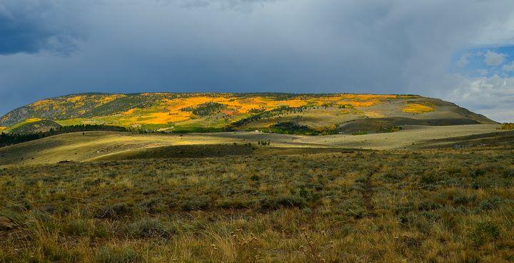 Aspens in the fall, Southern Utah - Aspen Ridge Gallery
