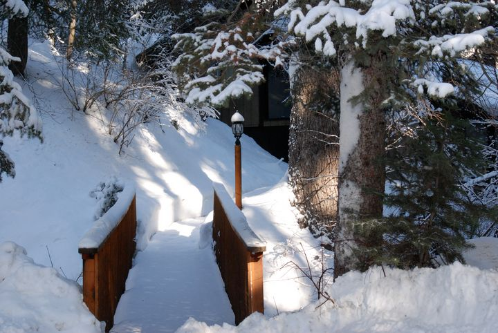 Over the River and through the Woods - Aspen Ridge Gallery