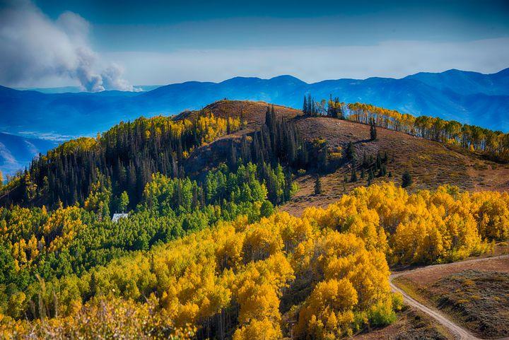 Forest Fire in Fall in Utah - Aspen Ridge Gallery