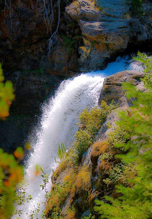 Moose Falls at Crawfish Creek - Aspen Ridge Gallery
