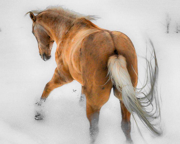 Dancing in the snow - Aspen Ridge Gallery