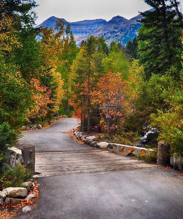 Sundance Ski Resort in Autumn - Aspen Ridge Gallery