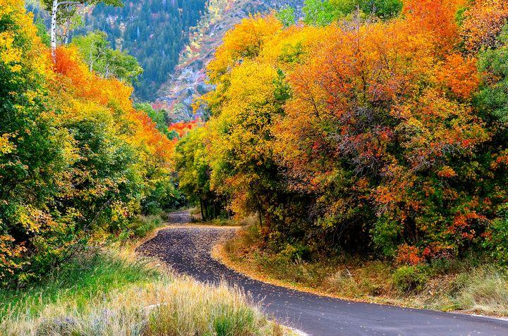 Winding road through Sundance - Aspen Ridge Gallery