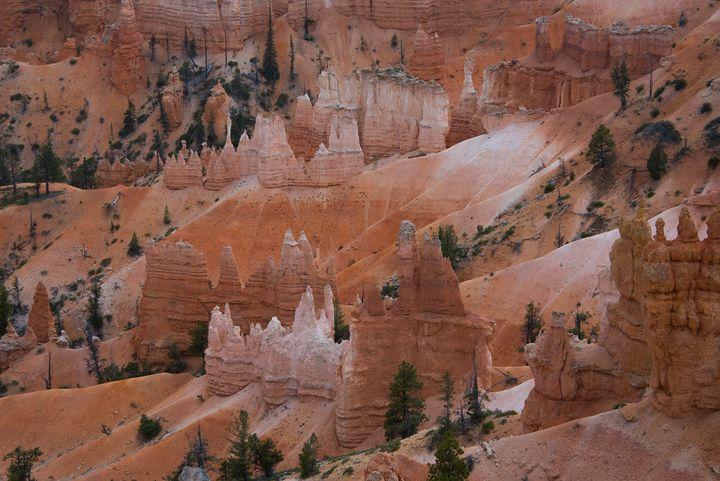 Sunrise Spires - Aspen Ridge Gallery