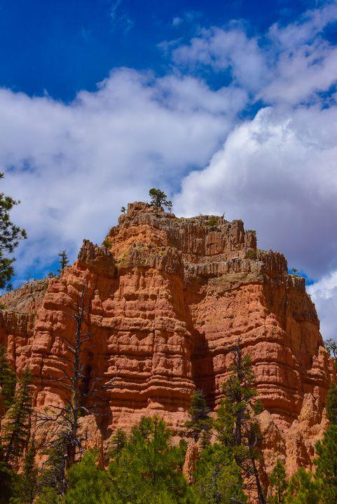 Red Canyon 1, Utah - Aspen Ridge Gallery