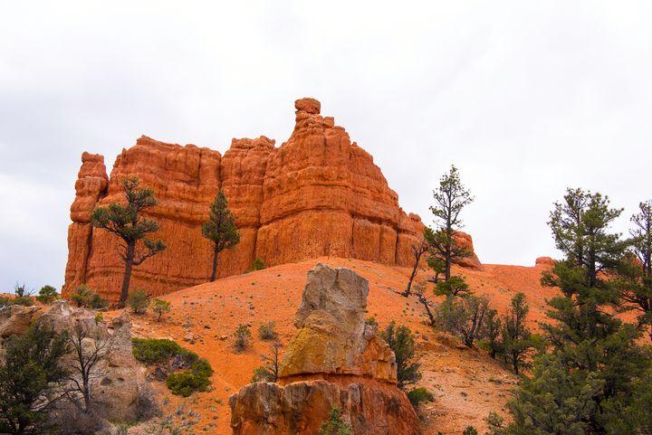 Red Canyon 5 - Aspen Ridge Gallery