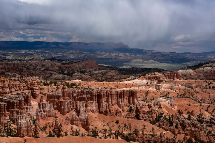 Summer Rains at Bryce Canyon, Utah - Aspen Ridge Gallery