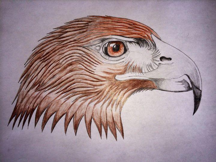 Hawks Head - Asylum 8 (Adam Taylor Dittemore)
