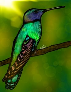 Colorful Bird Digital Art