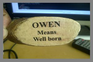 Owen Digital Art