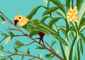 Parrot in banana trees