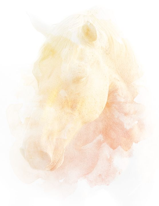 Horse Dreams - Nicole Ashly