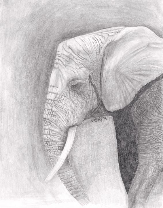 Elephant Walk - Josh Reeves