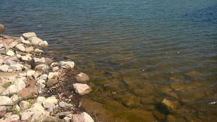 Lake Edge - Shelly Breeden