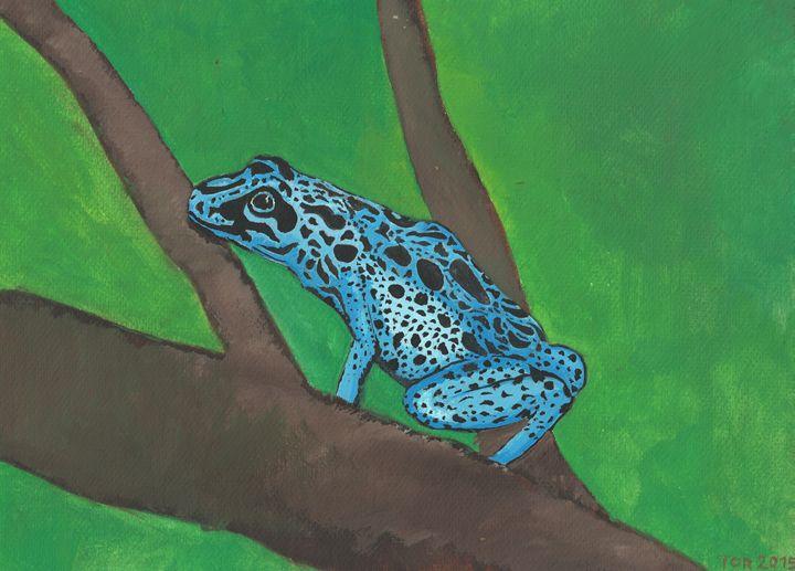 tree frog - Tor Tuga