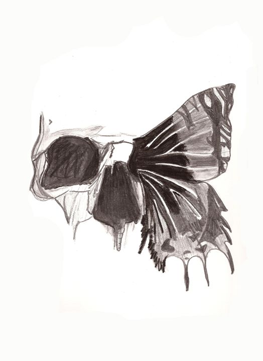 Butterfly - KayliejoyD