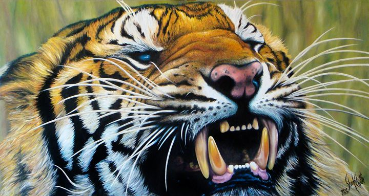 Bengal Tiger - Shams Khalili Paintings