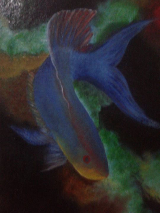 Blue Fish - GoColors