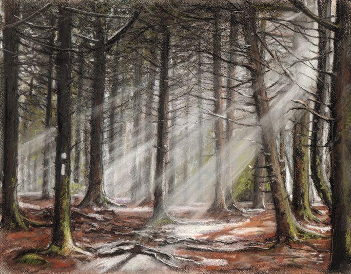 The Art Loeb Trail - Mike Wurman