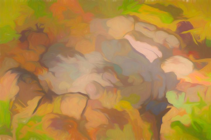 Colors of Leaves and Trees - Jill Nightingale