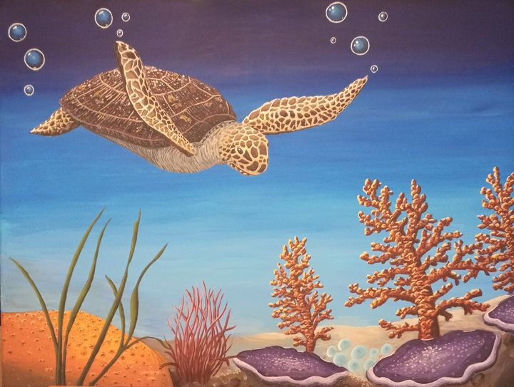 Sea Turtle Exploration - Cedric X