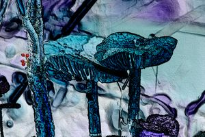 In the Forest - MercurywellArts