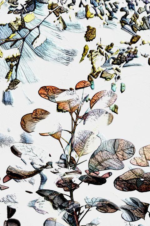 Winter Garden - MercurywellArts