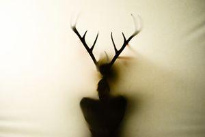 Deer Figure