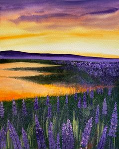 Lavender Field At Dusk(SOLD OUT)