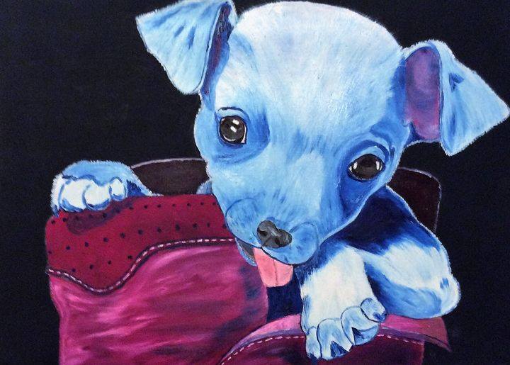 Happy chihuahua in a boot - J.Clay Originals