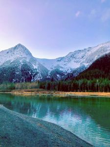 Alaskana beauty II